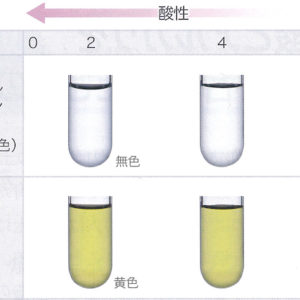 炭酸水素ナトリウムの水溶液が塩基性なのはなぜ?化学反応式を解説
