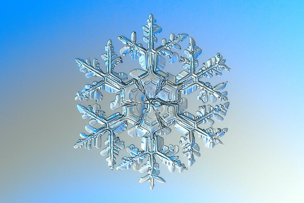 雪の結晶の光学顕微鏡写真